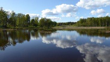 Våtmark-Fladen-från-vallen